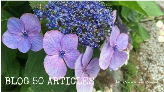 50-articles
