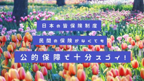 知らなかった!日本の社会保険・公的保障はスゴイ。民間の保険がなくても手厚い!