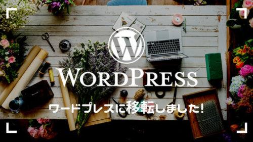 はてなブログからWordPressに移転。無料・手間なし・簡単に移行できるサービスをご紹介