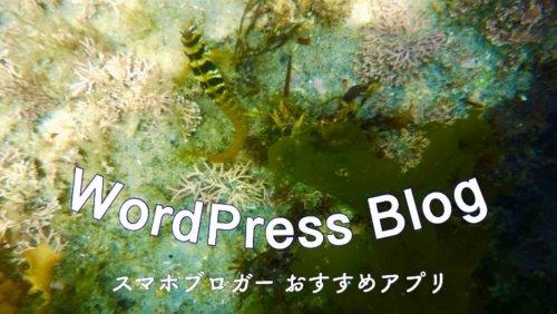 WordPressブログをスマホで更新!おすすめiPhoneアプリ