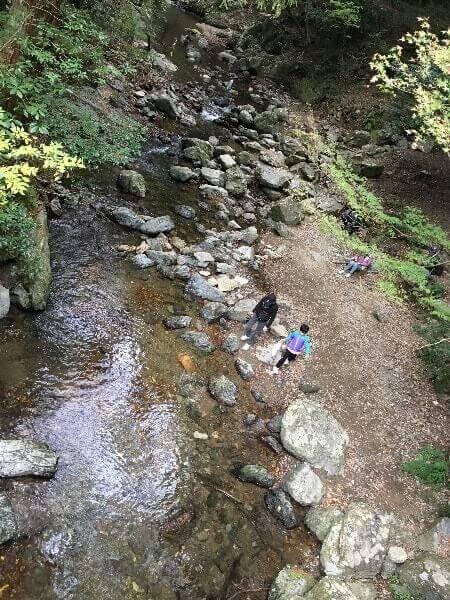 川辺で遊ぶ子どもたち。