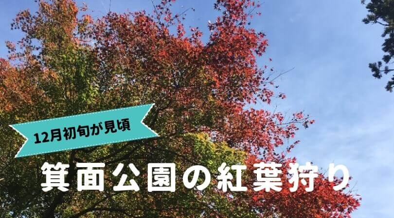箕面公園の紅葉狩り