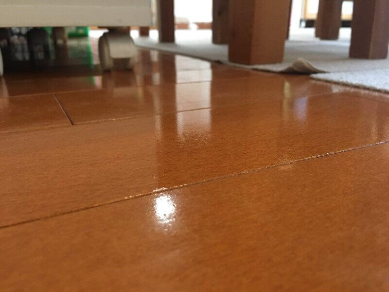 愛犬の床|現地調査で一部施工した箇所
