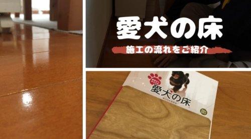 愛犬の床|見積りから施工までの流れを解説!丸1日で滑らないフローリングに