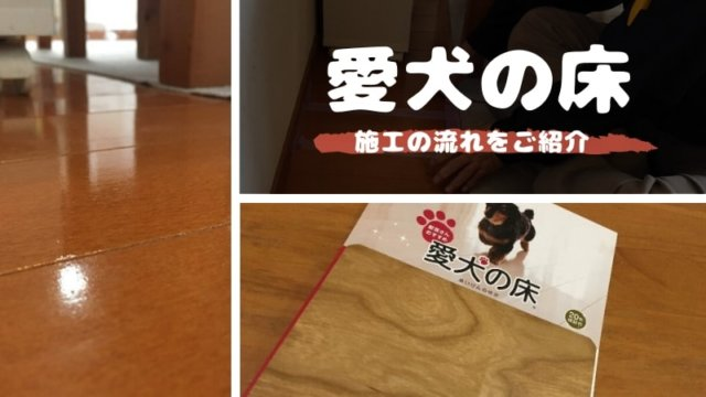 how-to-construct-love-dog-floor