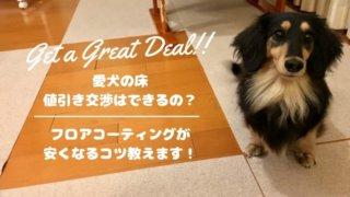 love-dog-floor-discount