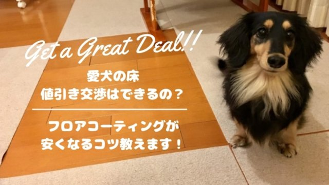 love-dog-floor-discount