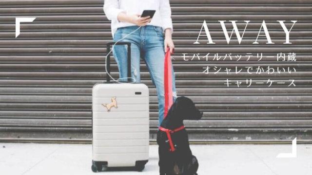 AWAY-carrycase