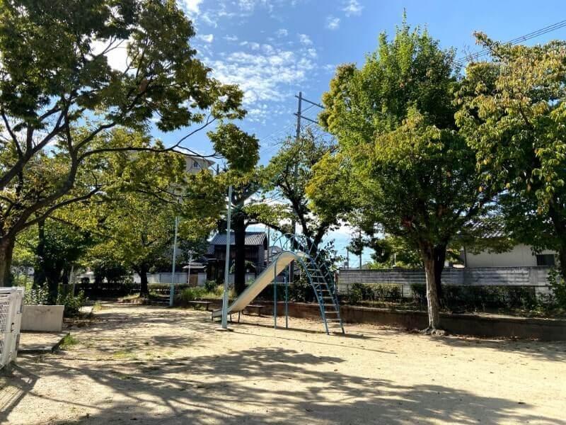 公園|iPhone11で撮影(通常レンズ)