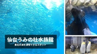 sendai-sea-aquarium
